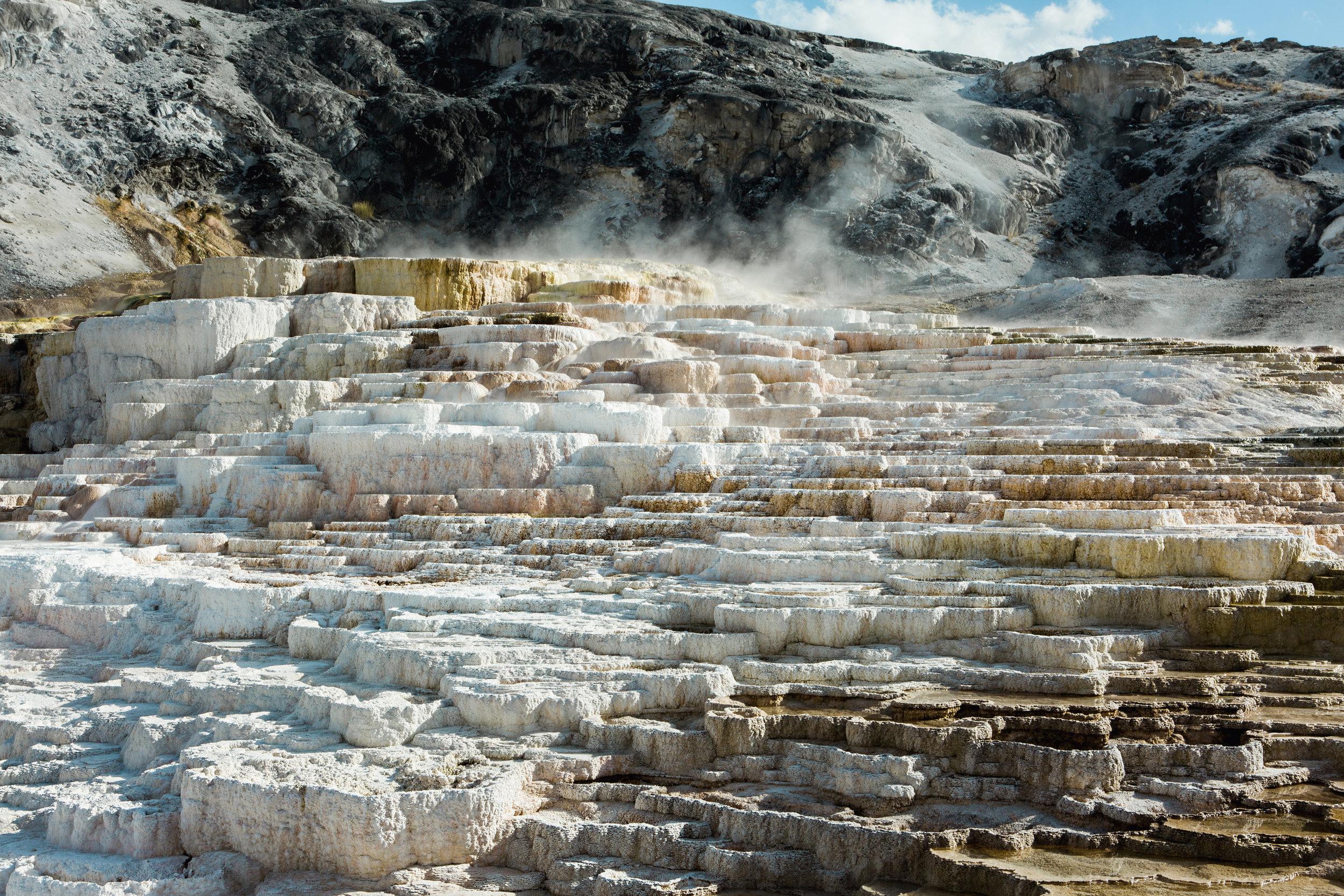CindyGiovagnoli_Yellowstone_National_Park_Montana_Wyoming_bison_pronghorn_snow_elk_truckcamping-006.jpg
