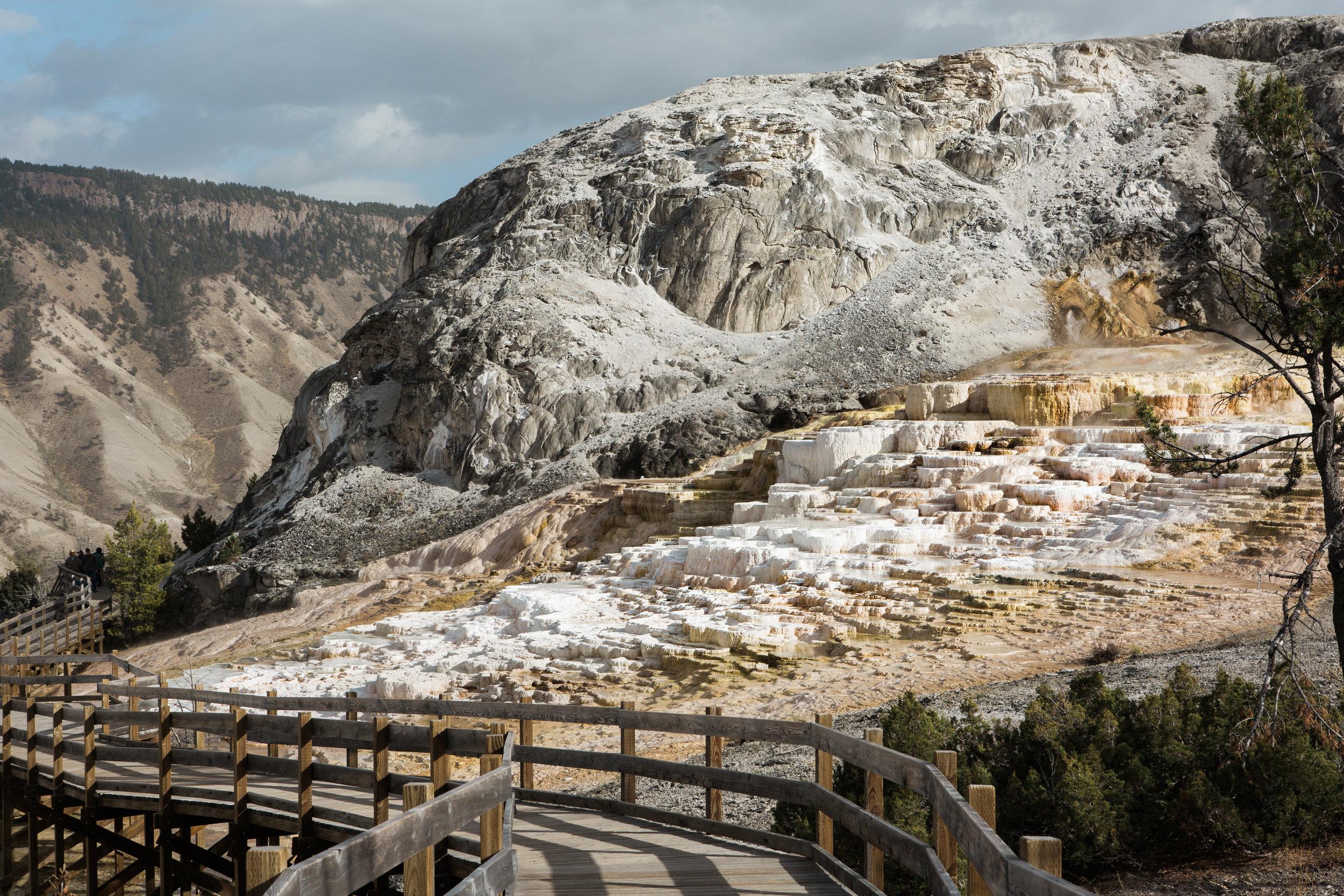 CindyGiovagnoli_Yellowstone_National_Park_Montana_Wyoming_bison_pronghorn_snow_elk_truckcamping-009.jpg