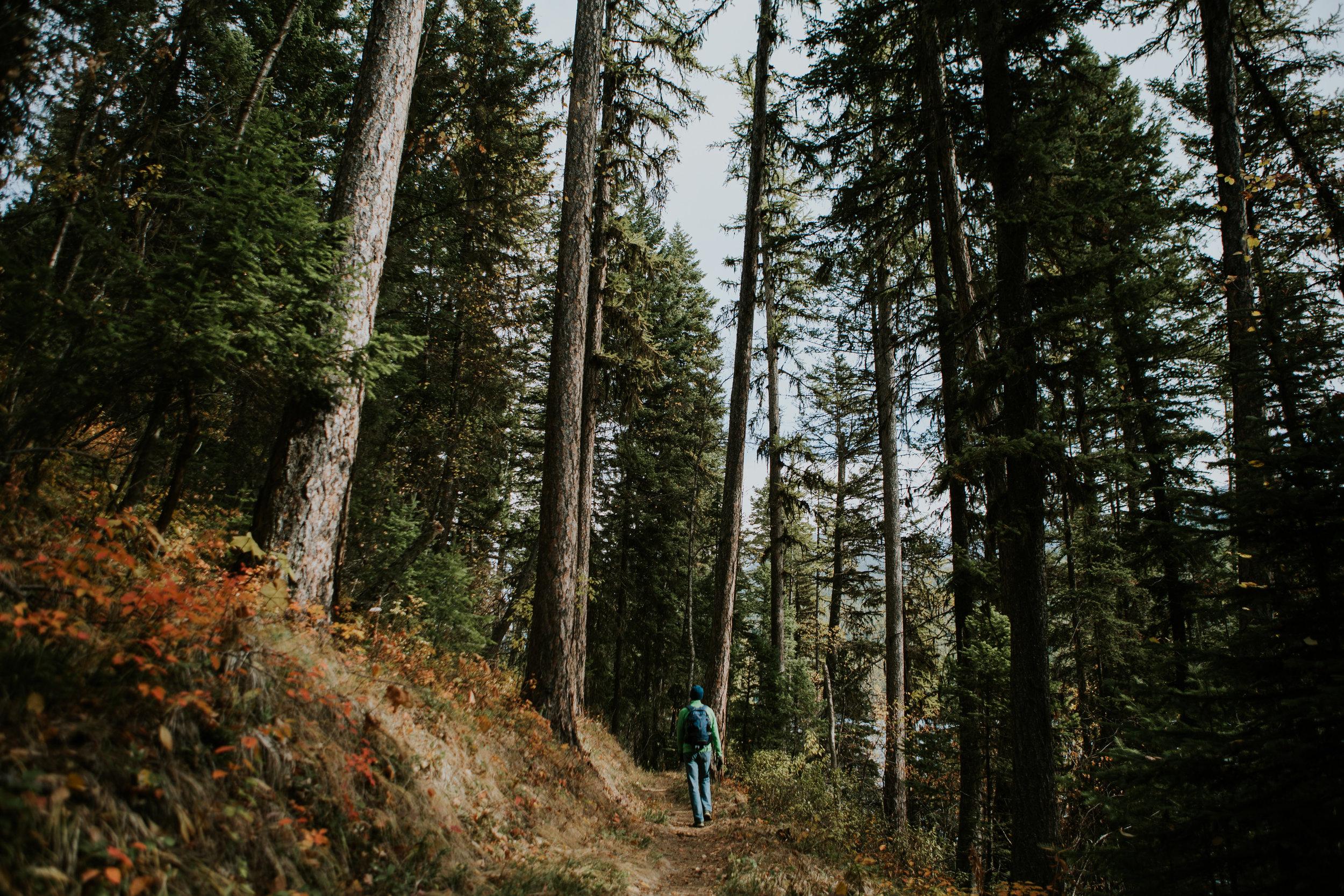 CindyGiovagnoli_Glacier_National_Park_Montana_mountains_lake_fall_autumn_road_trip-024.jpg