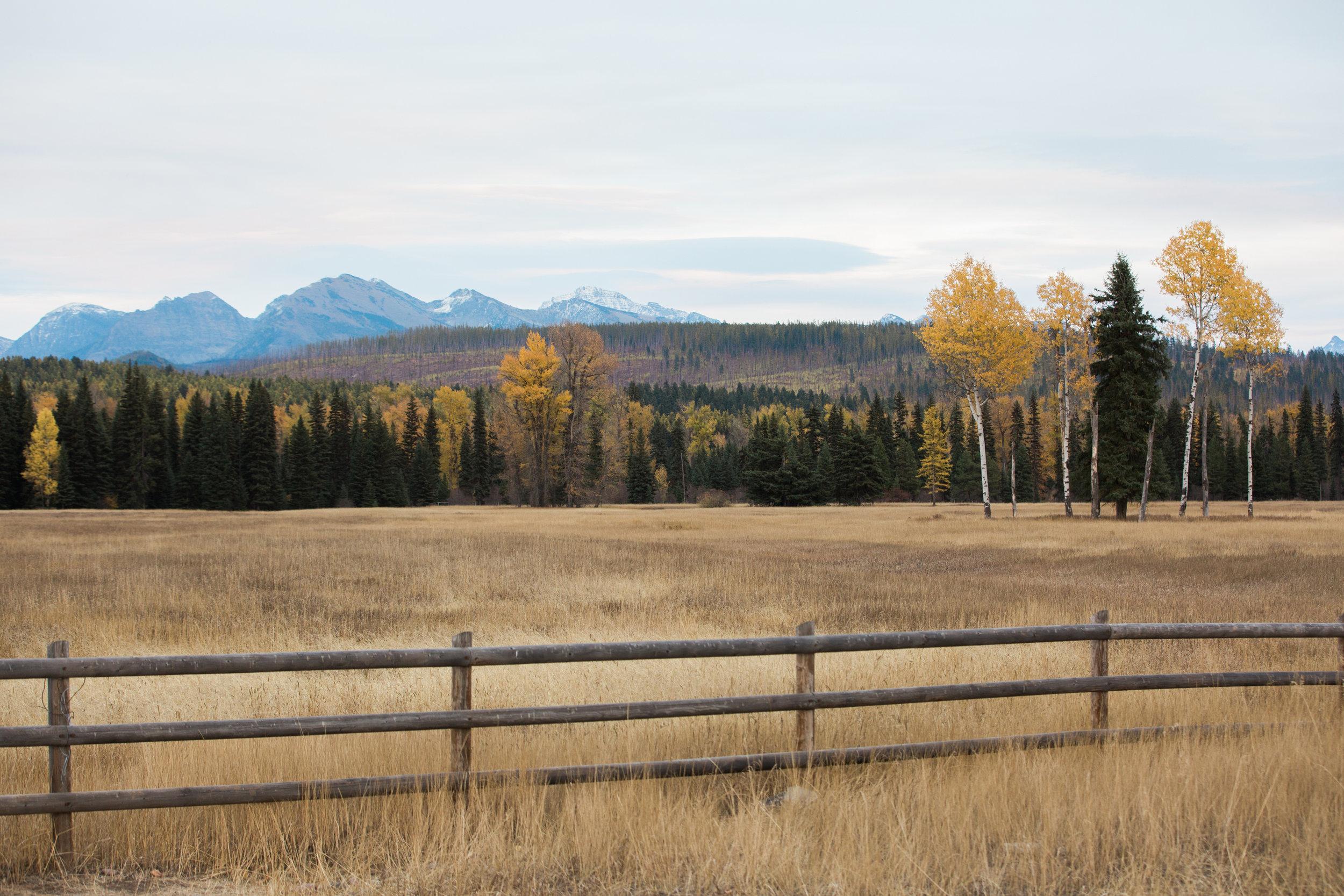 CindyGiovagnoli_Glacier_National_Park_Montana_mountains_lake_fall_autumn_road_trip-037.jpg