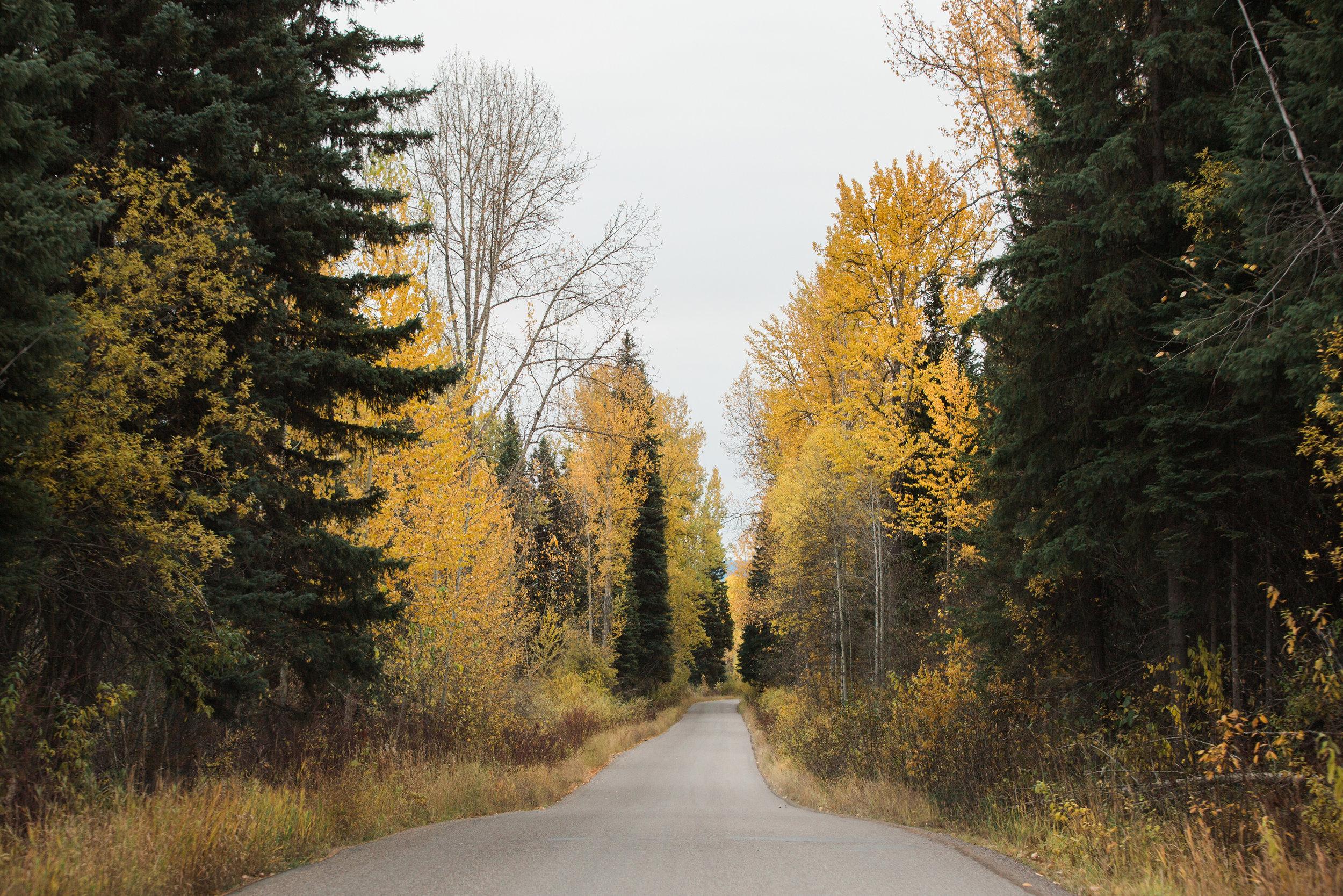 CindyGiovagnoli_Glacier_National_Park_Montana_mountains_lake_fall_autumn_road_trip-036.jpg