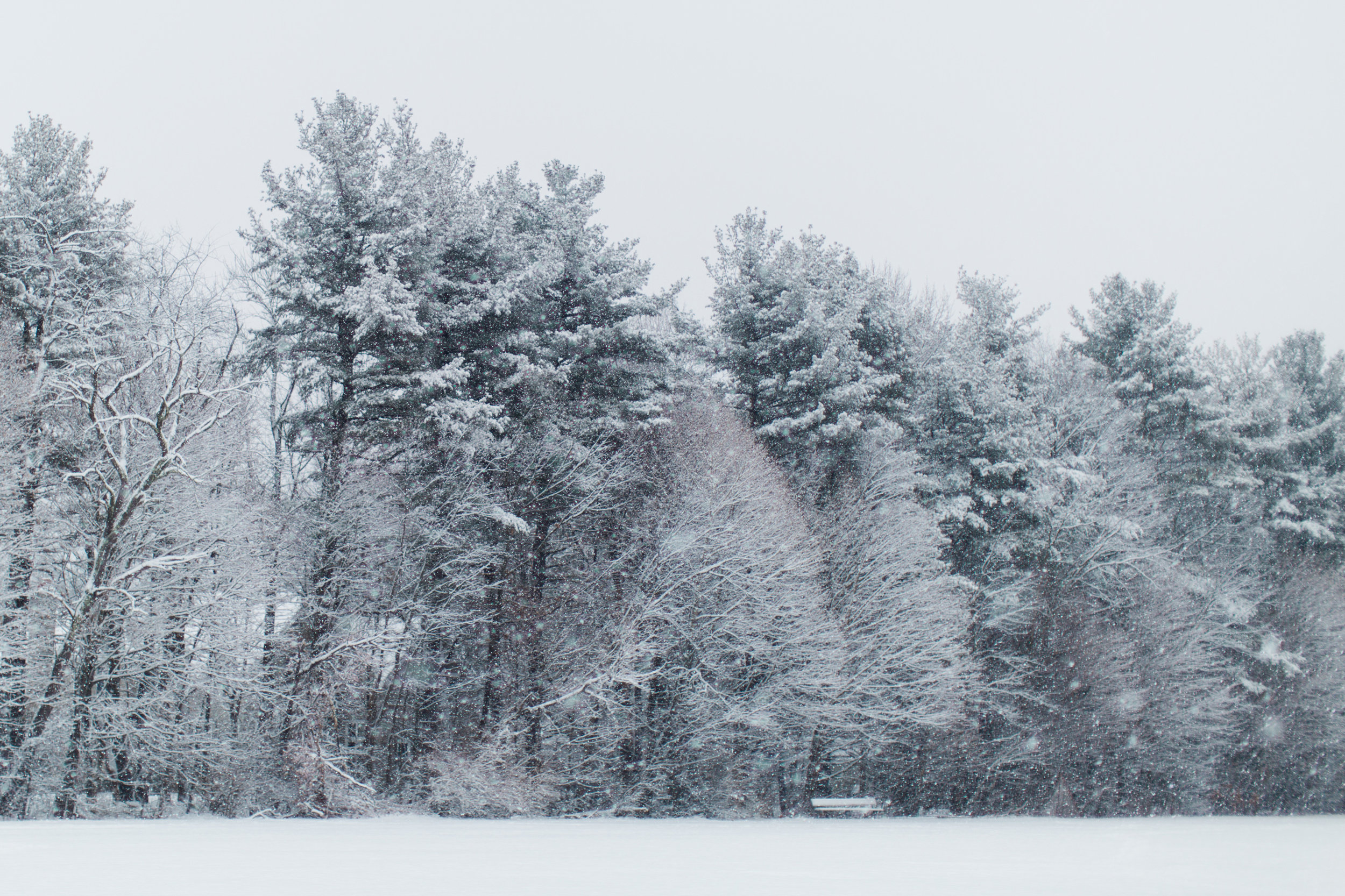 CindyGiovagnoli_New_Hampshire_New_England_snow_winter-002.jpg