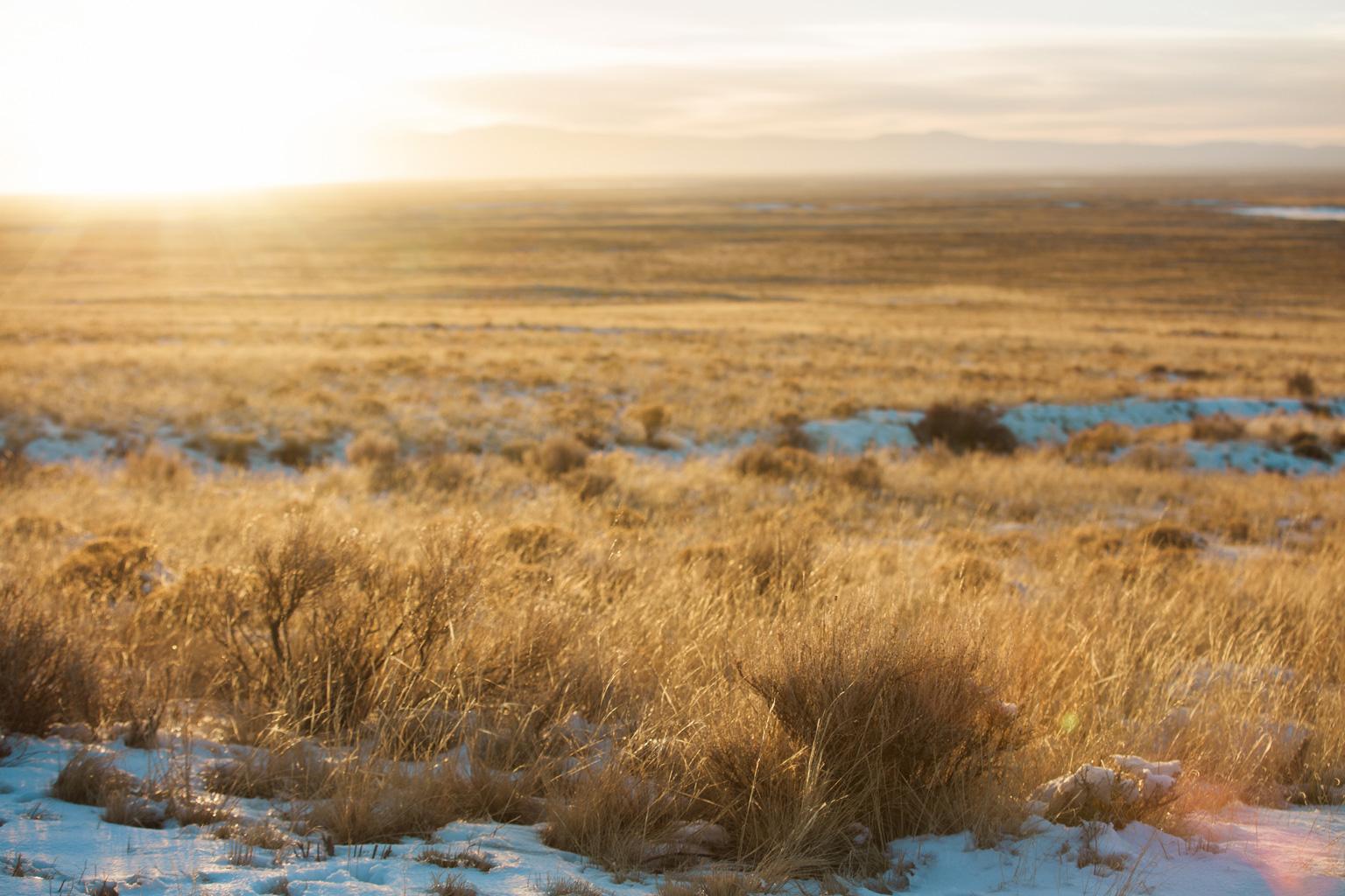CindyGiovagnoli_Great_Sand_Dunes_National_Park_NPS_Colorado_roadtrip-014.jpg