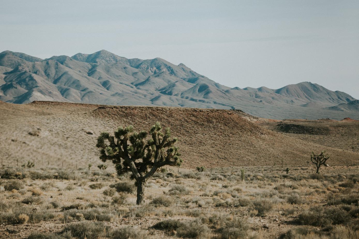 CindyGiovagnoli_Nevada_Arizona_roadtrip_sunset_travel_camper_tinyhouse-008.jpg