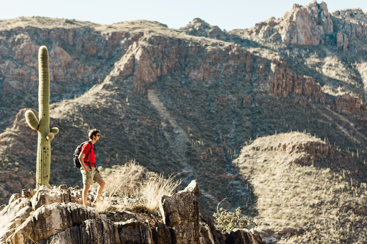 CindyGiovagnoli_Tucson_Arizona_Sabino_Canyon_Phone_Line_Trail_Uinta_Brewing_saguaro_cactus_desert_hiking-008.jpg