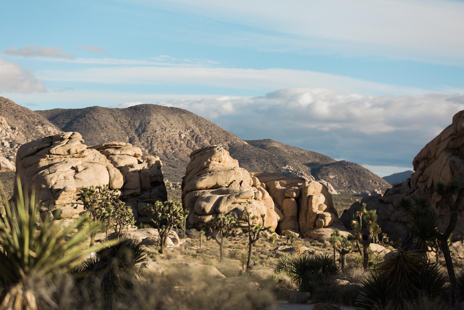 CindyGiovagnoli_Joshua_Tree_National_Park_California_Mojave_Desert_Cholla_Garden_Hidden_Valley_climbing_hiking_camping-006.jpg