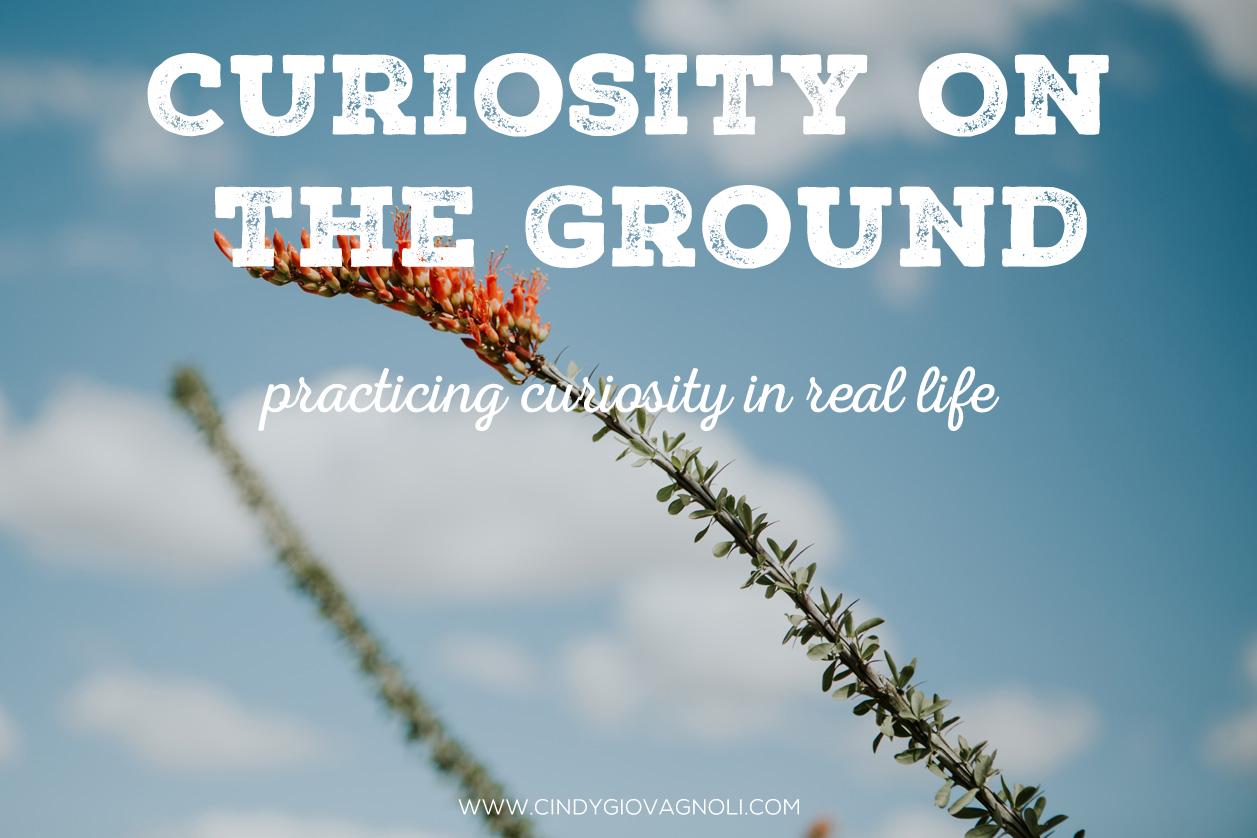 CuriosityOnTheGround.jpg