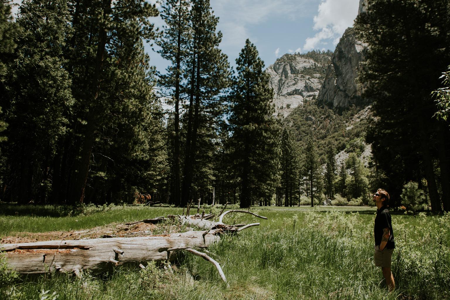CindyGiovagnoli_Sequoia_Kings_Canyon_National_Park_California_bear_camping_roadtrip_travel-008.jpg