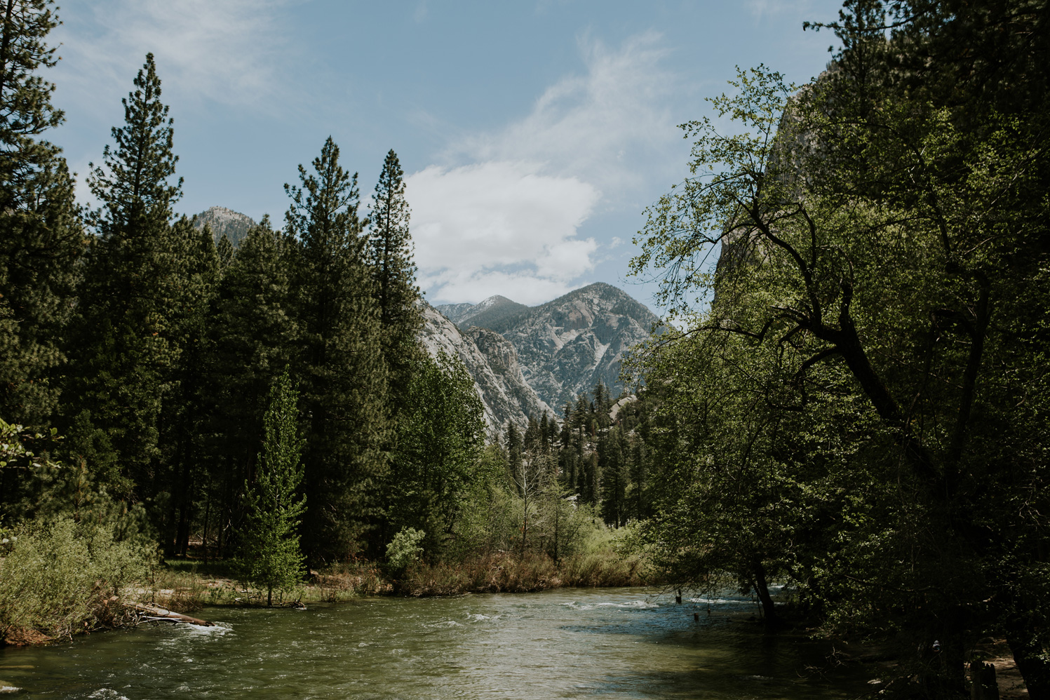 CindyGiovagnoli_Sequoia_KingsCanyon_National_Park_California_forest_fire-006.jpg