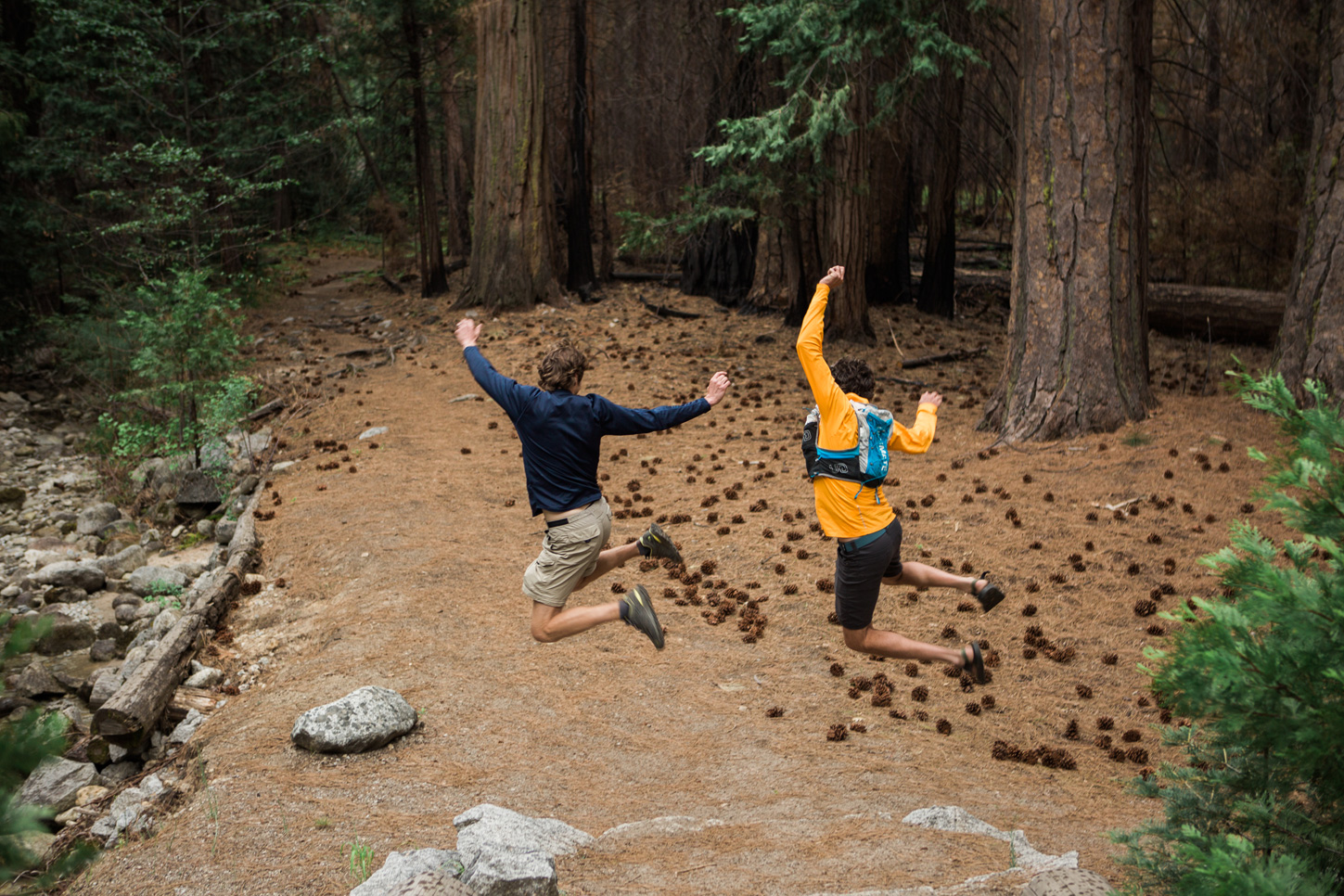 CindyGiovagnoli_Sequoia_KingsCanyon_National_Park_California_forest_fire-029.jpg