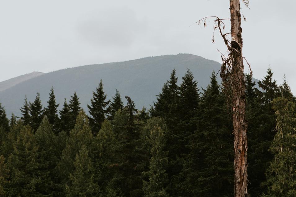 CindyGiovagnoli_BritishColumbia_Yukon_Alaska_roadtrip_AlCan_Alaskan_Highway_truck_camping-016.jpg