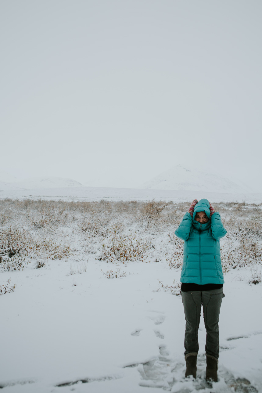 CindyGiovagnoli_Alaska_DaltonHighway_GalbraithLake_NorthSlope_GatesOfTheArctic_ArcticCircle_ArcticNationalWildlifeRefuge_Moose_DallSheep_snow_winter_BrooksRange-015.jpg
