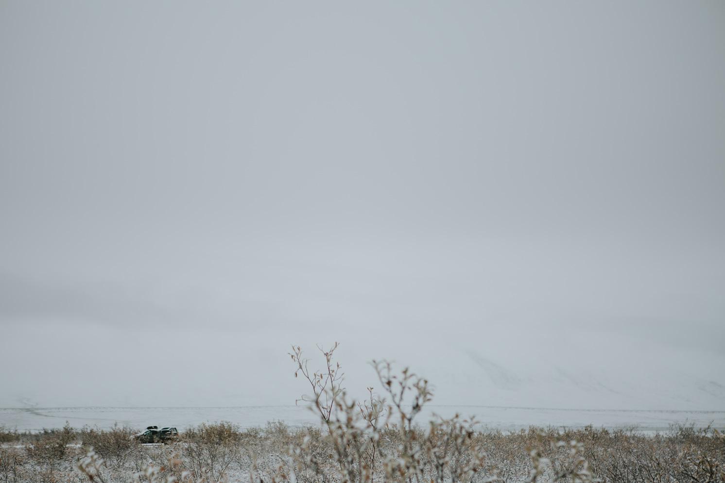 CindyGiovagnoli_Alaska_DaltonHighway_GalbraithLake_NorthSlope_GatesOfTheArctic_ArcticCircle_ArcticNationalWildlifeRefuge_Moose_DallSheep_snow_winter_BrooksRange-020.jpg