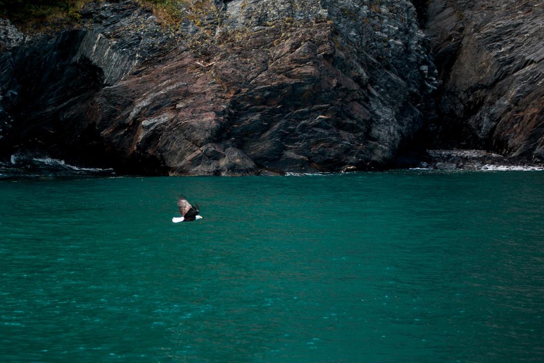 CindyGiovagnoli_Alaska_HardingIceField_Kenai_Peninsula_Exit_Glacier_autumn_travel-002.jpg