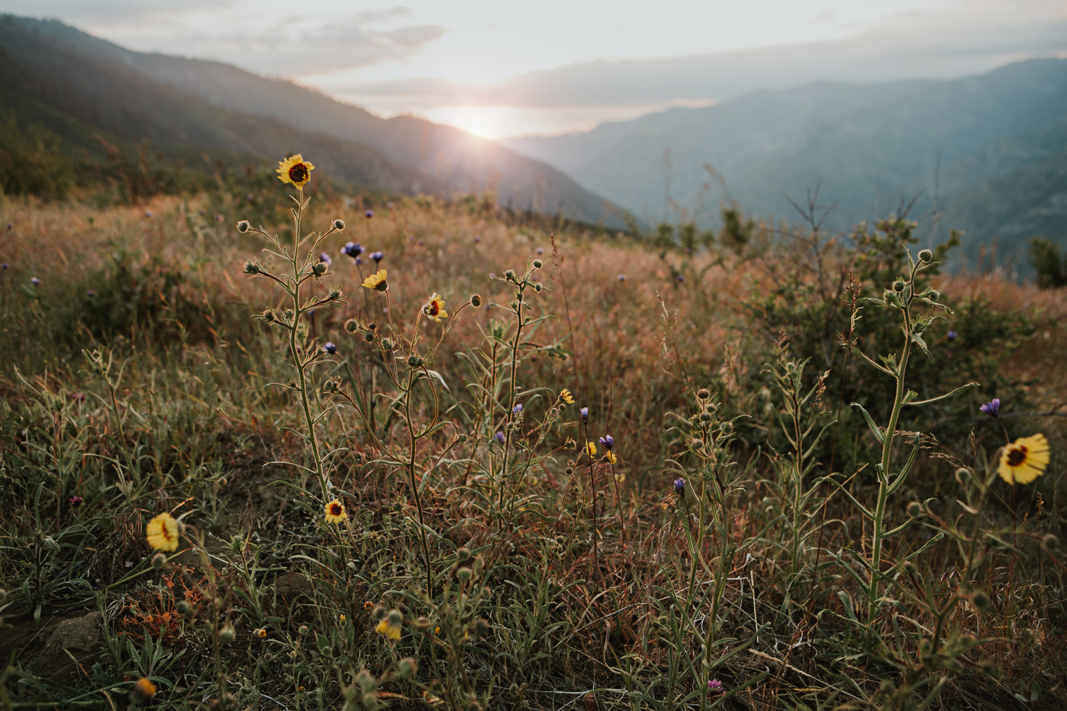 CindyGiovagnoli_Kings_Canyon_National_Park_hike_firetower_lookout_sunset-017.jpg
