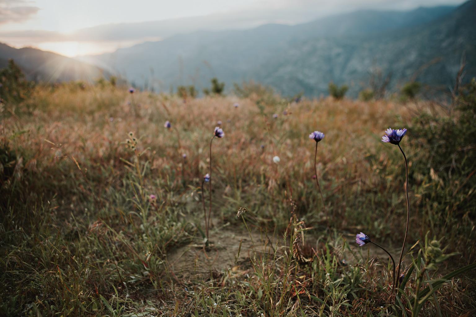 CindyGiovagnoli_Kings_Canyon_National_Park_hike_firetower_lookout_sunset-020.jpg