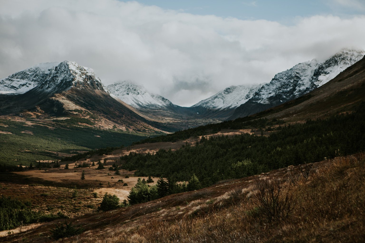 CindyGiovagnoli_Anchorage_Alaska_Flattop_mountain_hike_snocapped-008.jpg