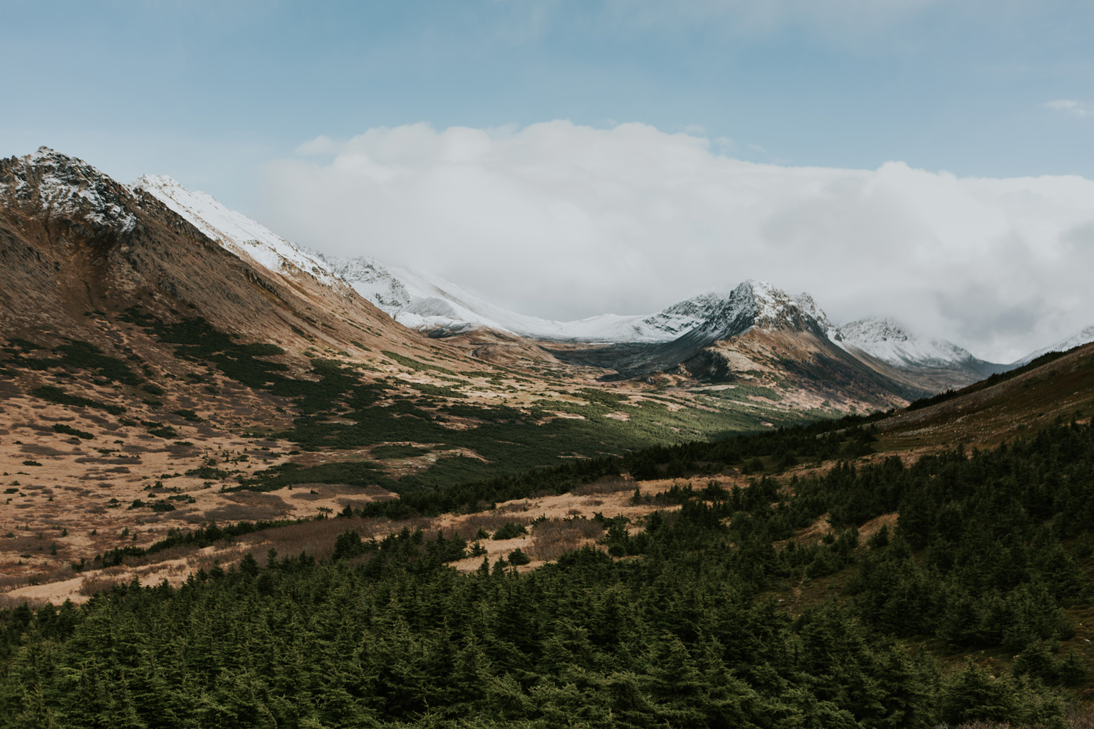CindyGiovagnoli_Anchorage_Alaska_Flattop_mountain_hike_snocapped-011.jpg