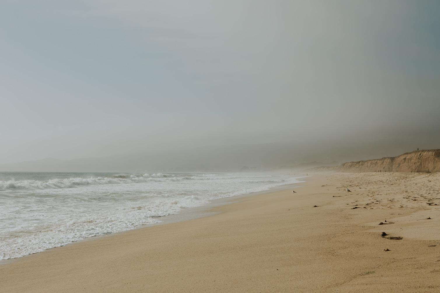CindyGiovagnoli_SantCruz_SanJose_SanFrancisco_NelderGrove_sea_lions_boardwalk_hapas_brewery_sourdough_ocean_half_moon_bay_California-052.jpg