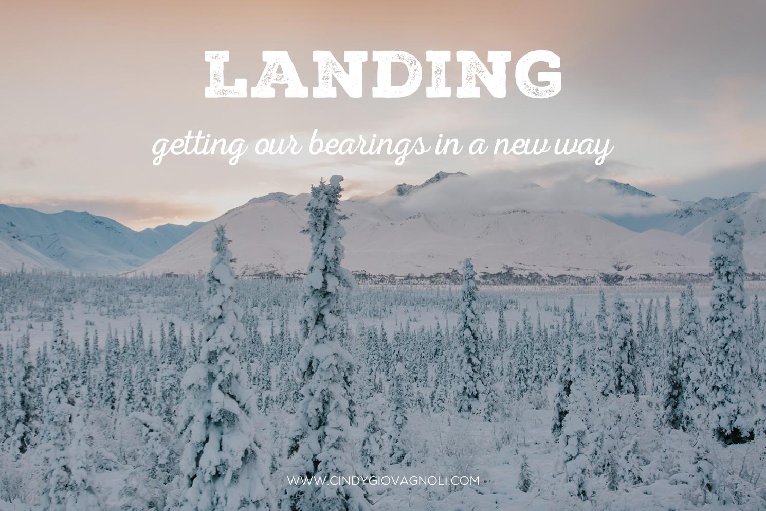Landing_1-9-19.jpg