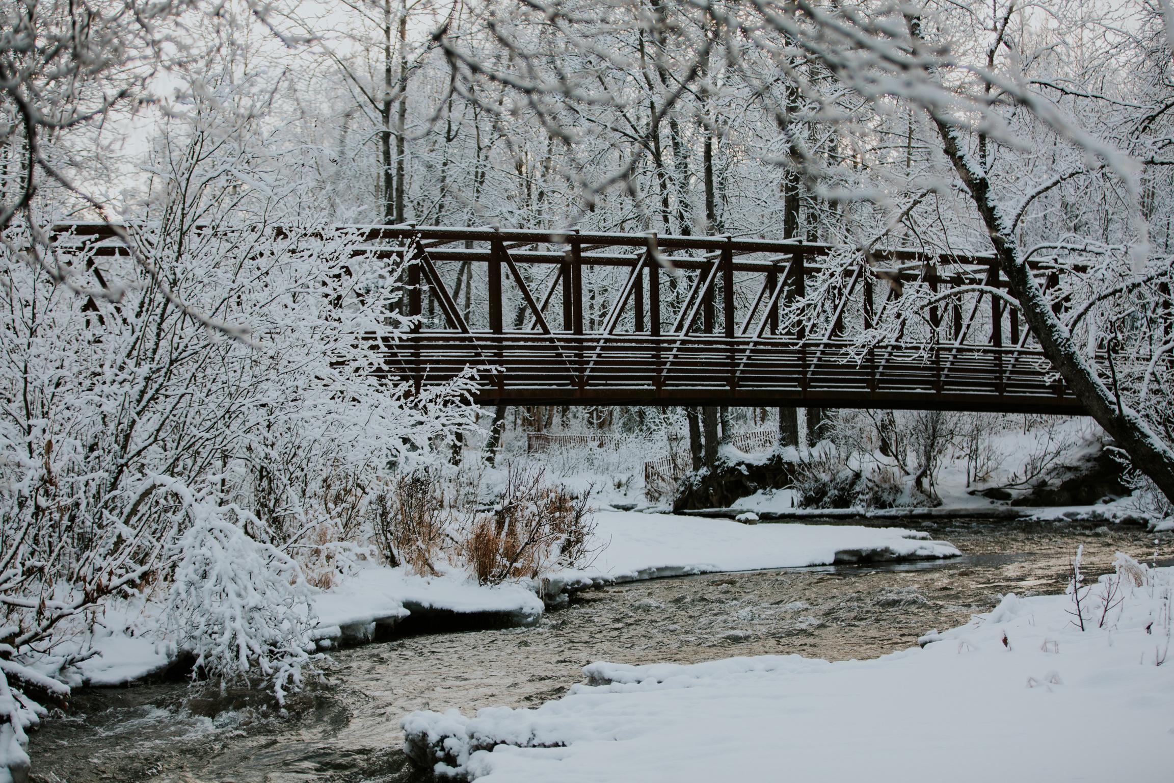 CindyGiovagnoli_Alaska_Anchorage_CampbellTract_Bicentennial_Park_winter_snow-001.jpg