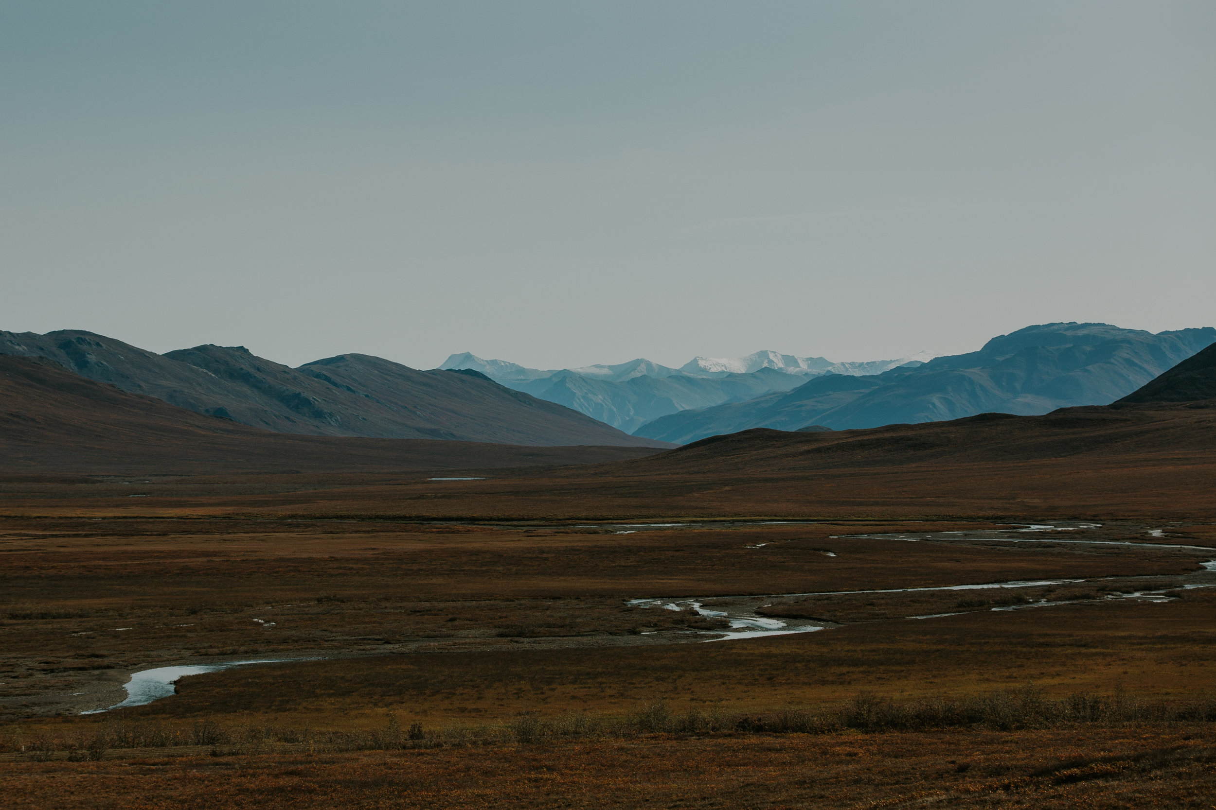 CindyGiovagnoli_Alaska_KoyukukRiver_SukakpakMountain_JimRiver_ArcticCircle_fly_fishing_September-003.jpg