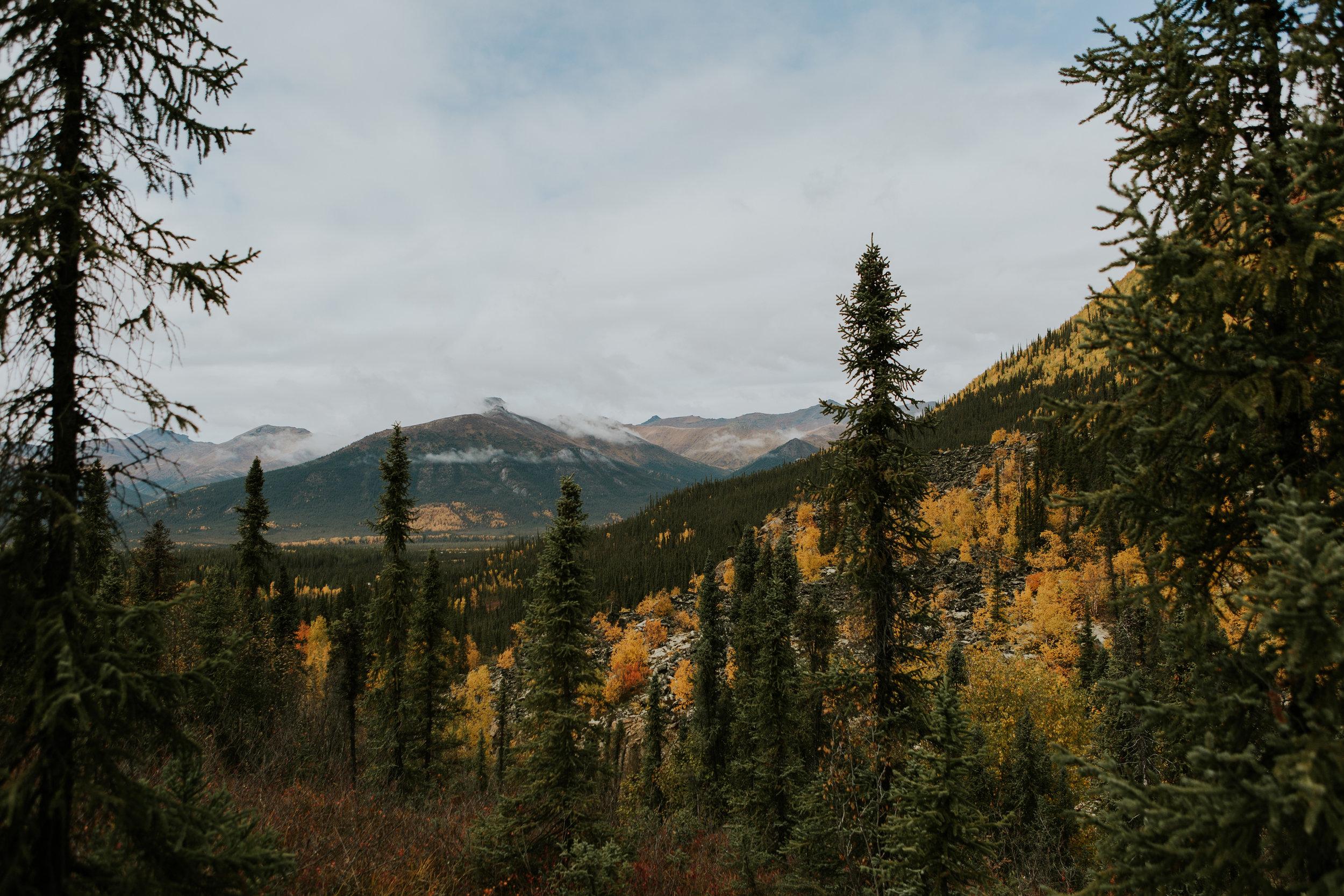 CindyGiovagnoli_Alaska_KoyukukRiver_SukakpakMountain_JimRiver_ArcticCircle_fly_fishing_September-040.jpg