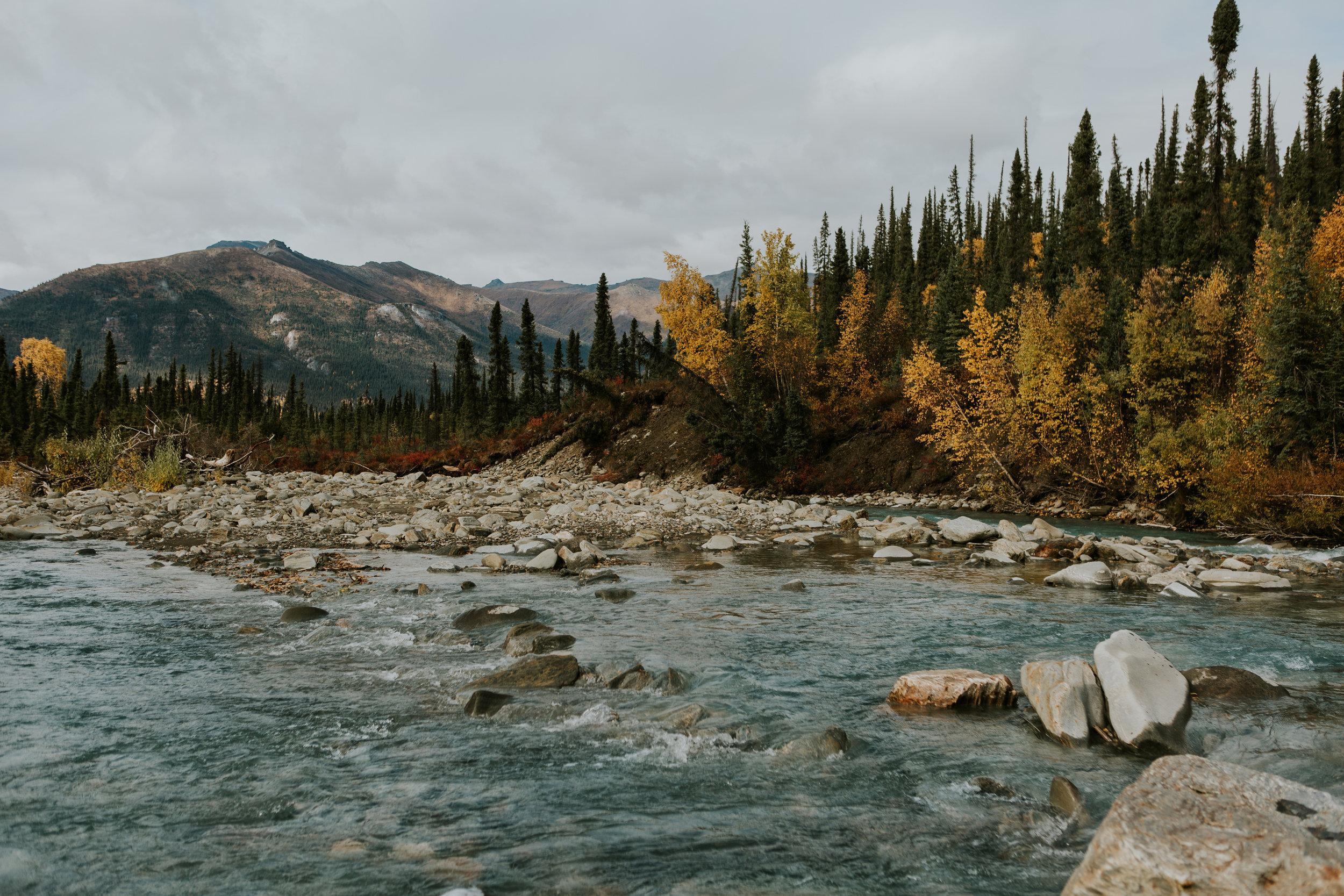 CindyGiovagnoli_Alaska_KoyukukRiver_SukakpakMountain_JimRiver_ArcticCircle_fly_fishing_September-043.jpg
