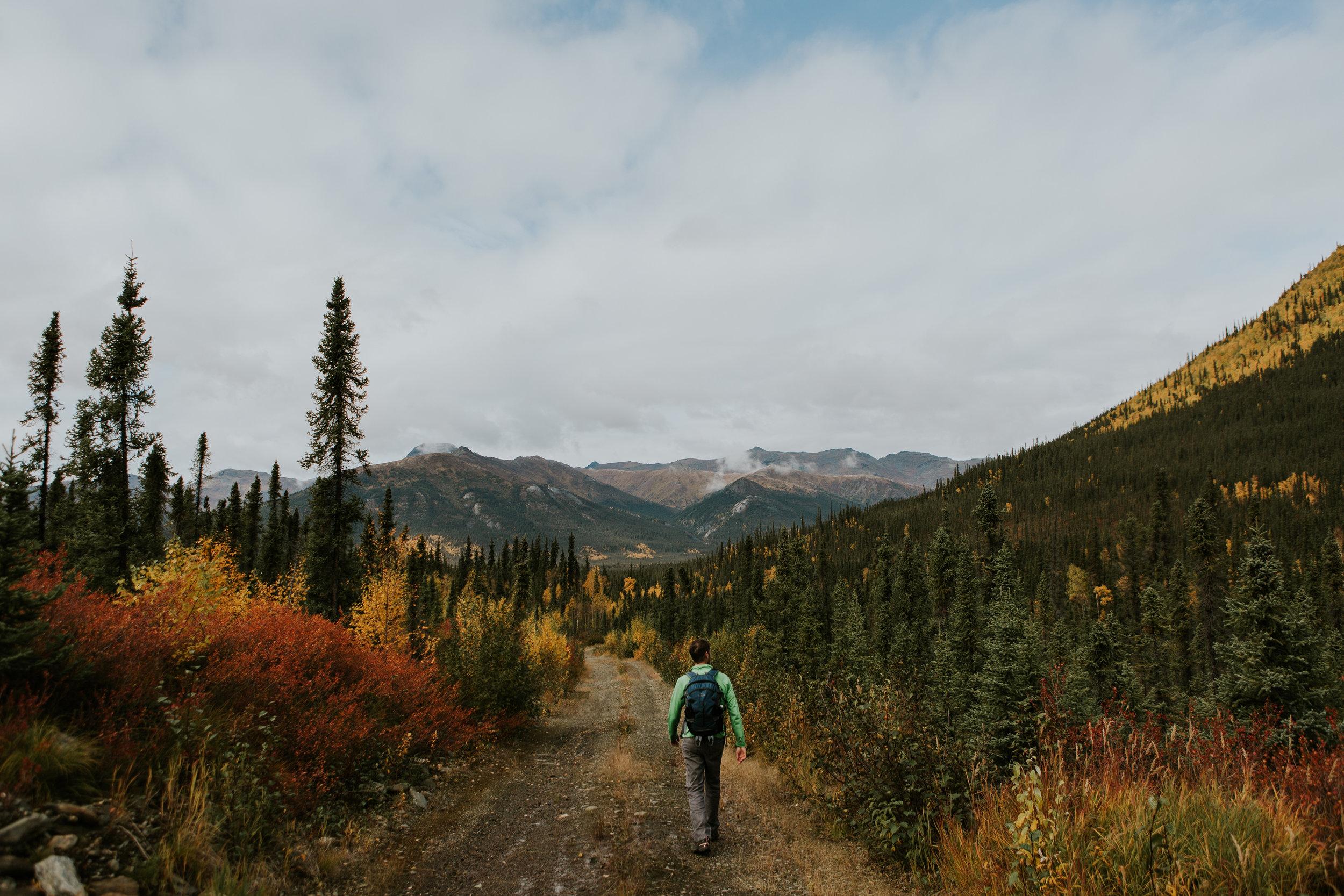 CindyGiovagnoli_Alaska_KoyukukRiver_SukakpakMountain_JimRiver_ArcticCircle_fly_fishing_September-044.jpg