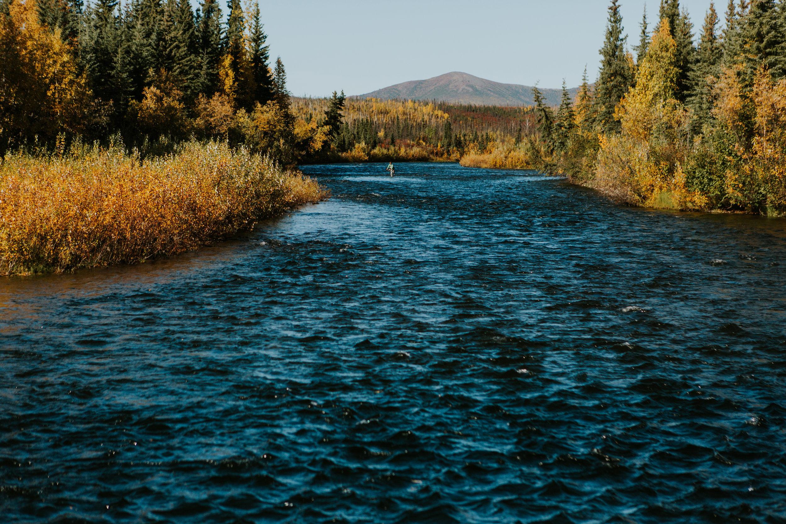 CindyGiovagnoli_Alaska_KoyukukRiver_SukakpakMountain_JimRiver_ArcticCircle_fly_fishing_September-061.jpg