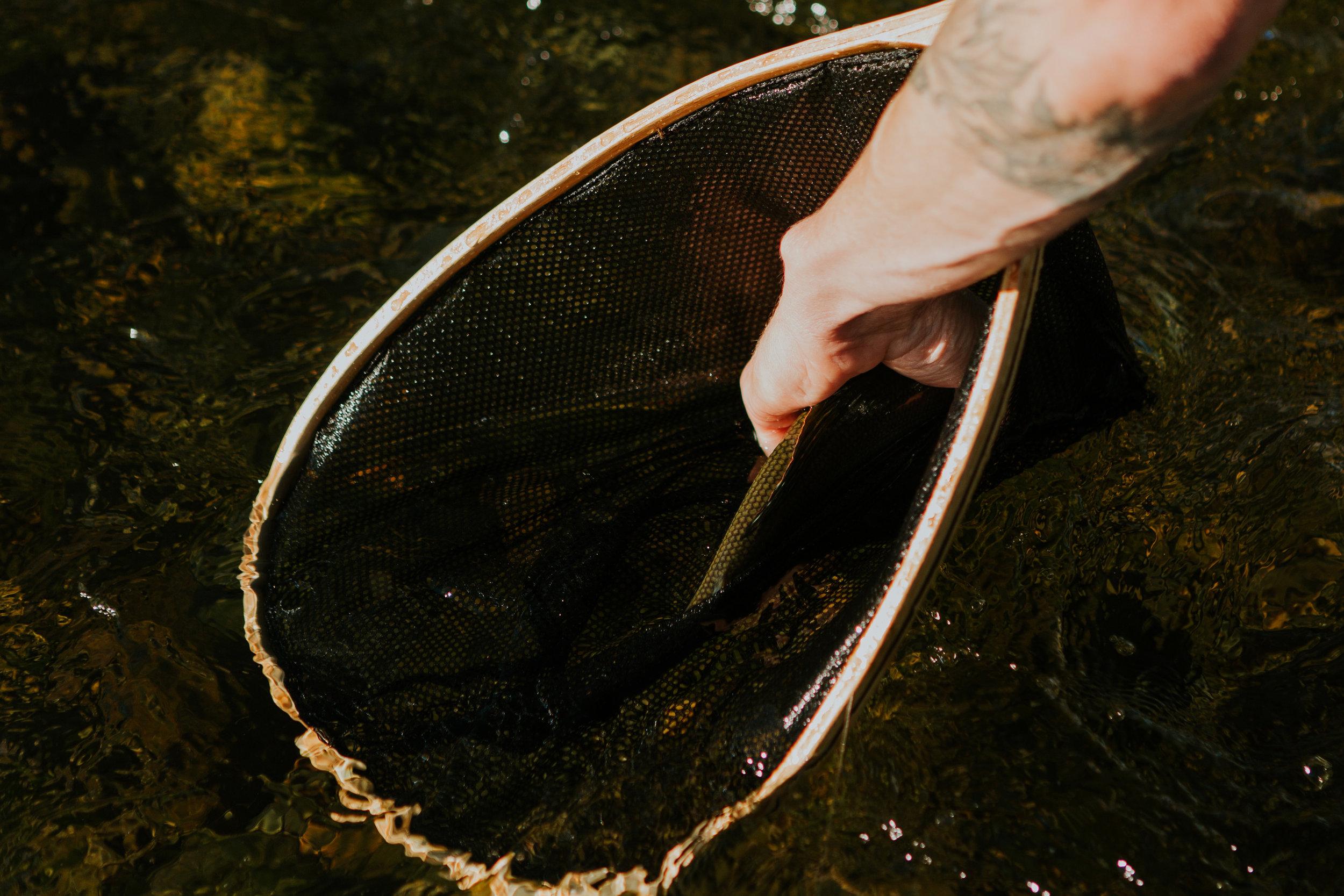 CindyGiovagnoli_Alaska_KoyukukRiver_SukakpakMountain_JimRiver_ArcticCircle_fly_fishing_September-064.jpg