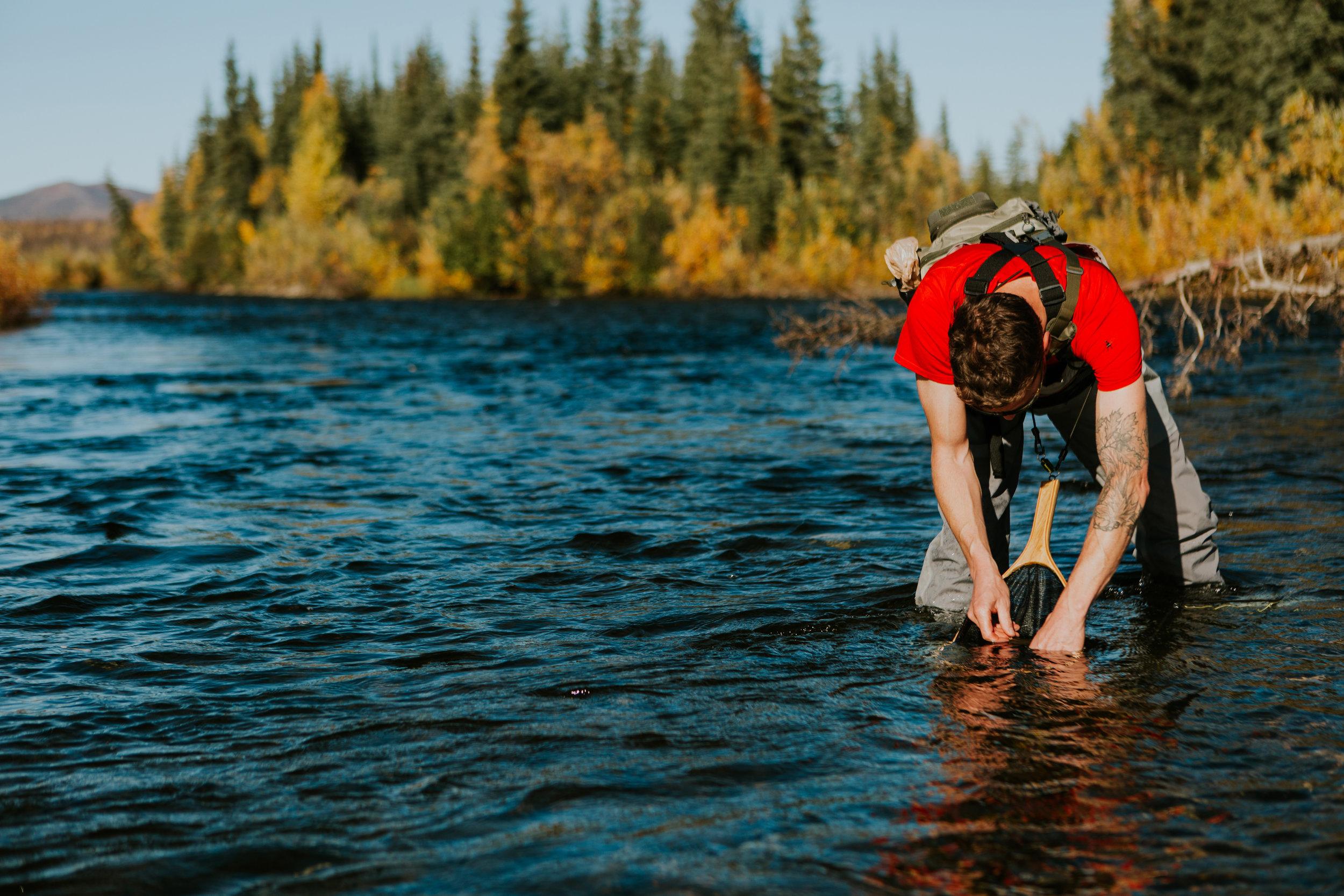 CindyGiovagnoli_Alaska_KoyukukRiver_SukakpakMountain_JimRiver_ArcticCircle_fly_fishing_September-067.jpg
