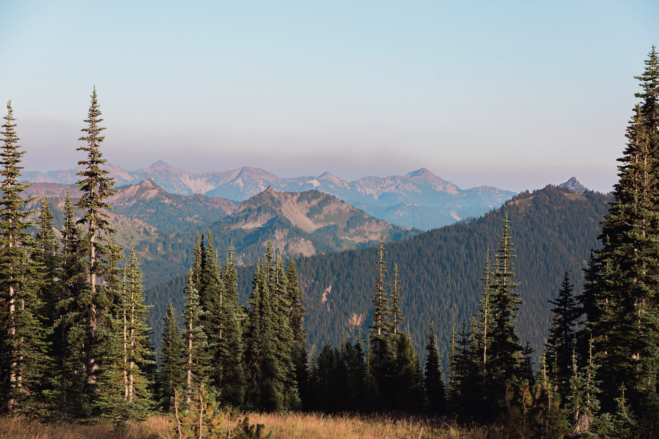 CindyGiovagnoli_MountRainierNationalPark_Washington_Seattle_PNW-001.jpg