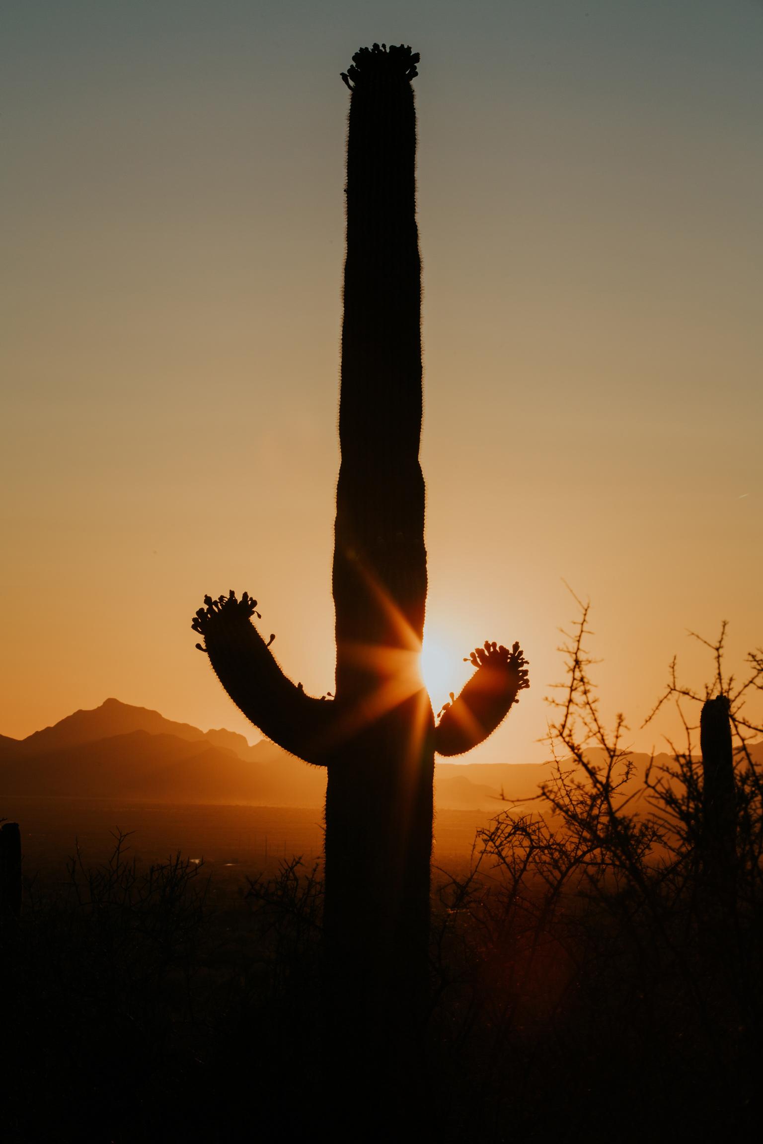 2018_Tucson_May4-097.jpg