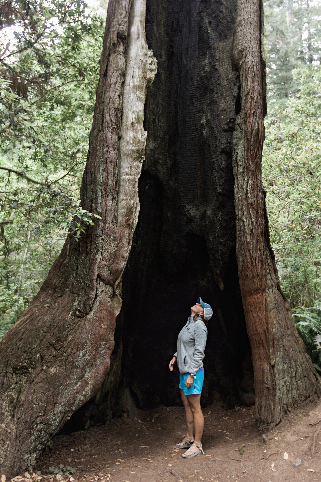 CindyGiovagnoli_Road_Trip_Travel_National_Parks_Explore_America-024.jpg
