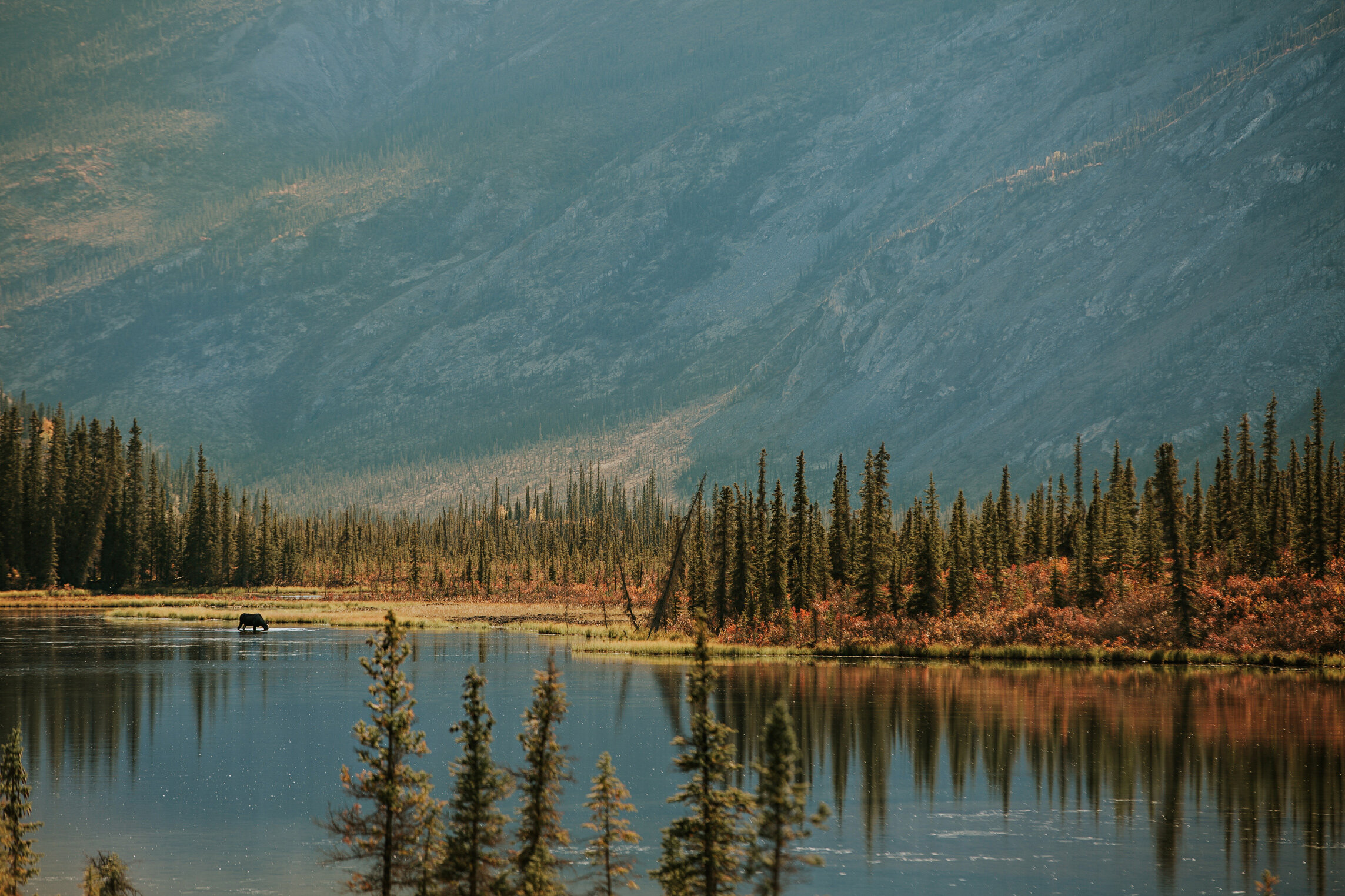 CindyGiovagnoli_Road_Trip_Travel_National_Parks_Explore_America-098.jpg
