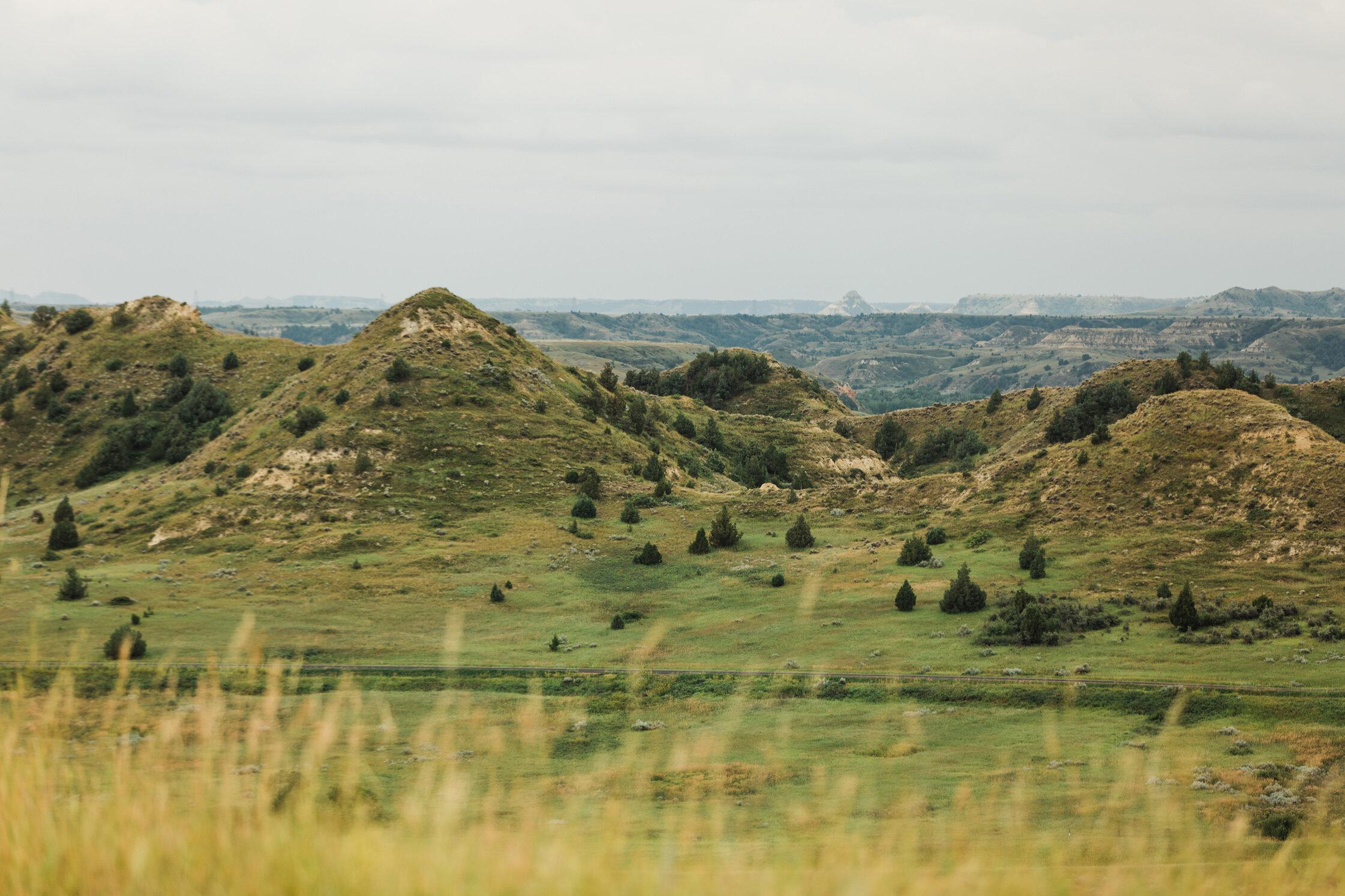 CindyGiovagnoli_Theadore_Roosevelt_National_Park_Glacier_North_Dakota_Montana-003.jpg