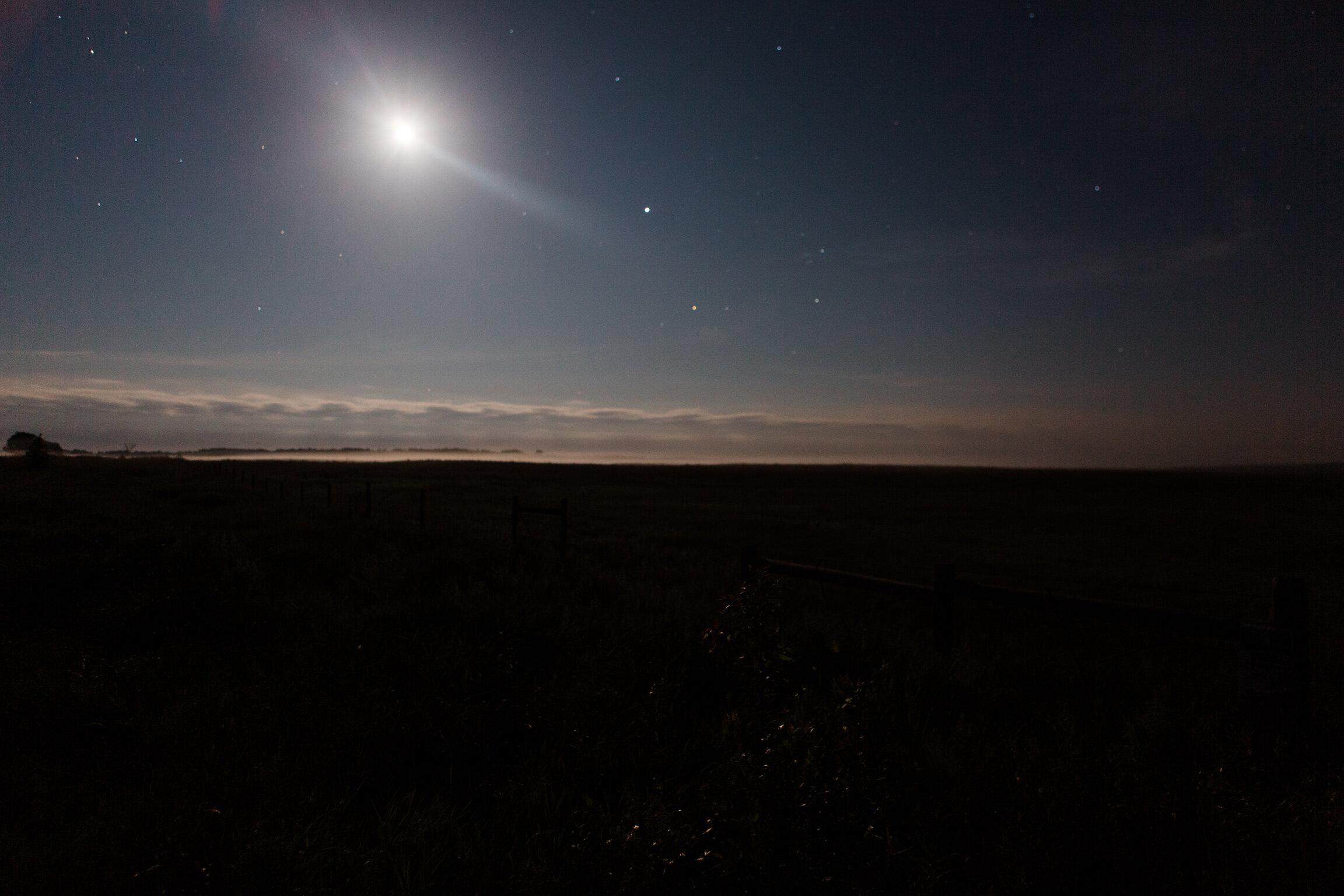 CindyGiovagnoli_Theadore_Roosevelt_National_Park_Glacier_North_Dakota_Montana-012.jpg