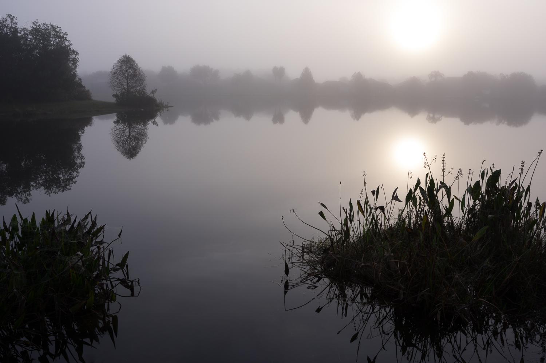 Pond, Orlando, Florida, January 2015