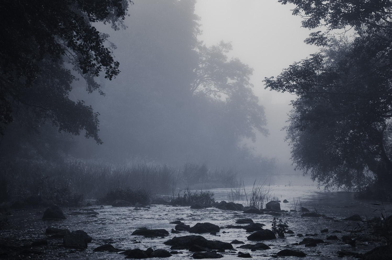 Misty stream.jpg