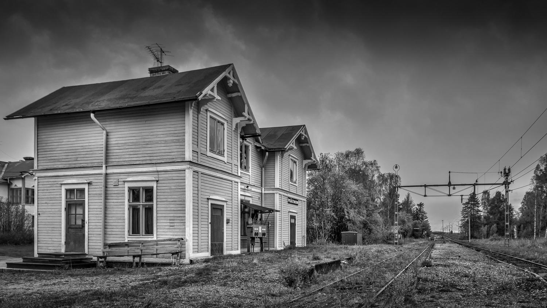 Prästmon, Ångermanland, May 2015