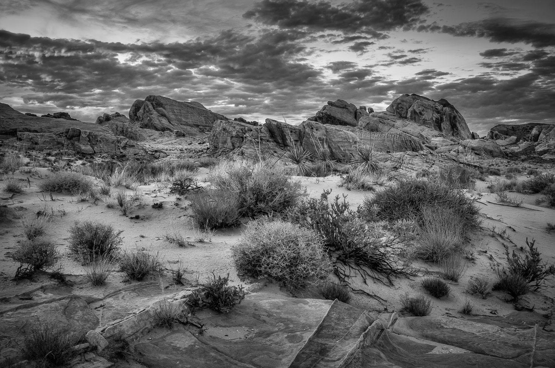 Valley of Fire-5.jpg
