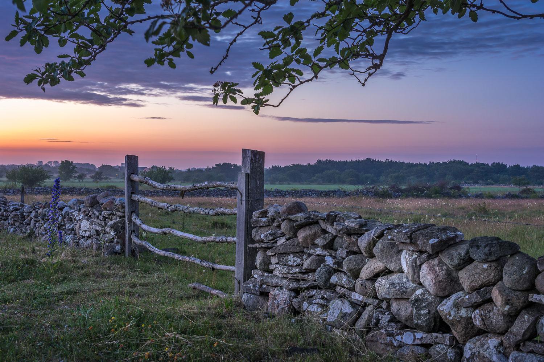 Gotland Gate.jpg