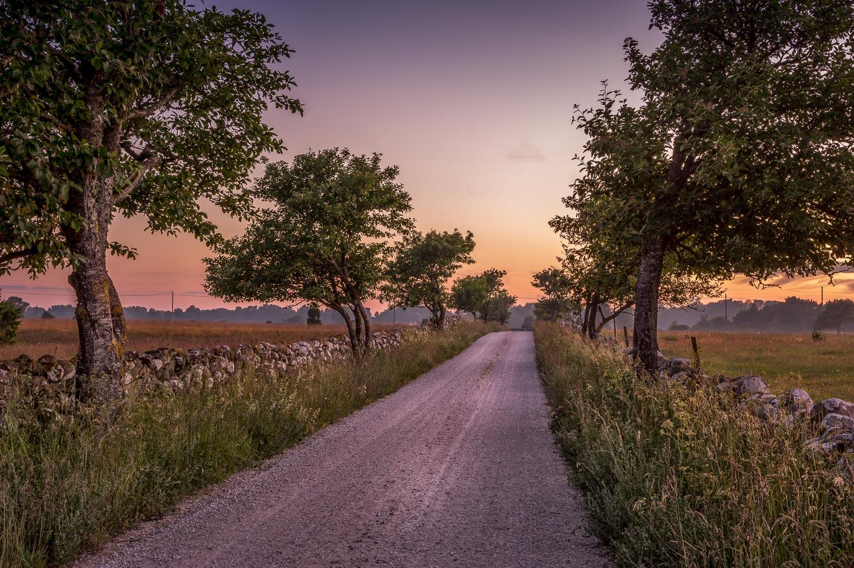 Salmunds road.jpg