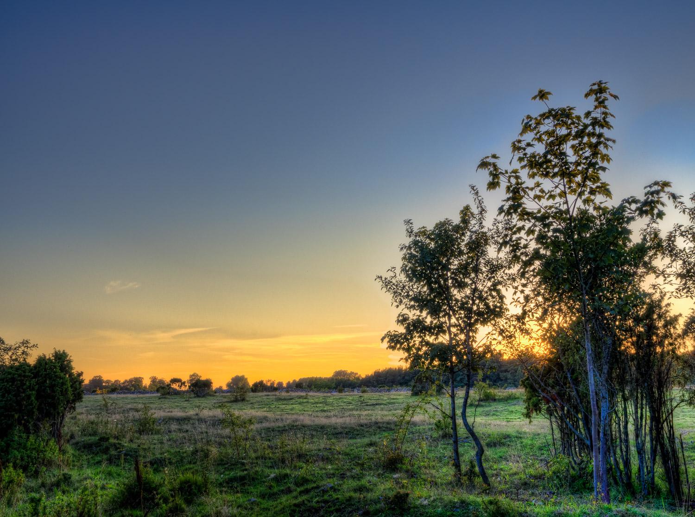 Salmunds sunrise.jpg