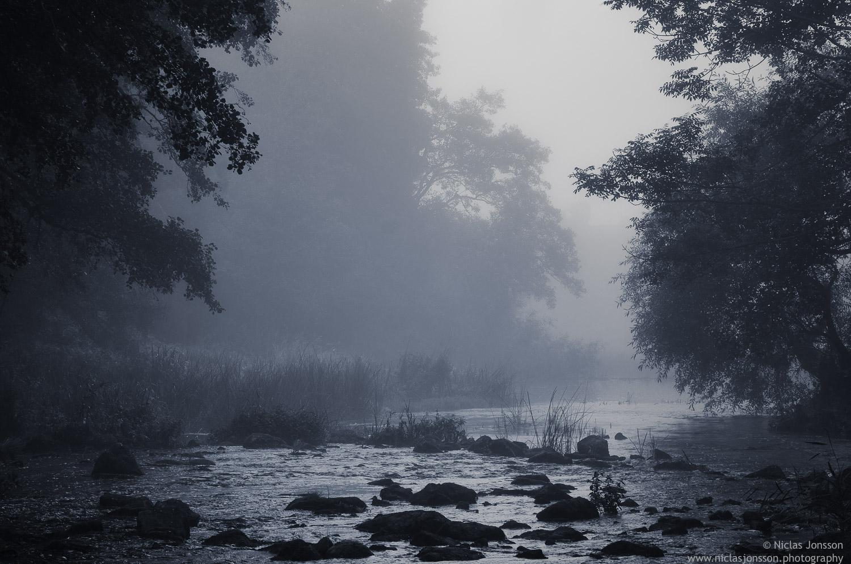 26 - Misty stream.jpg