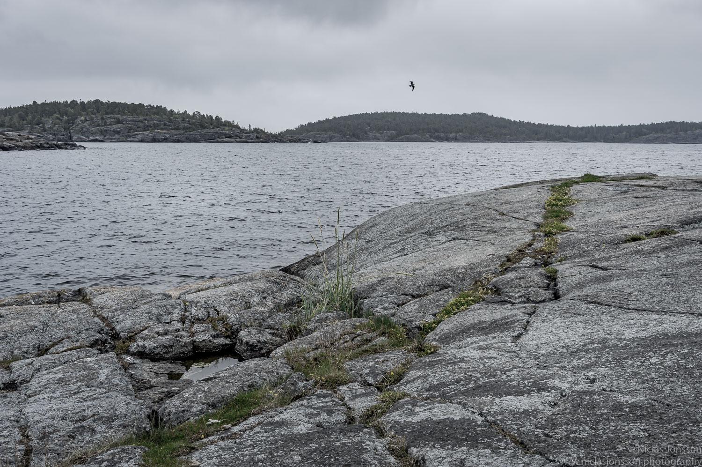 34 - Bönhamn.jpg