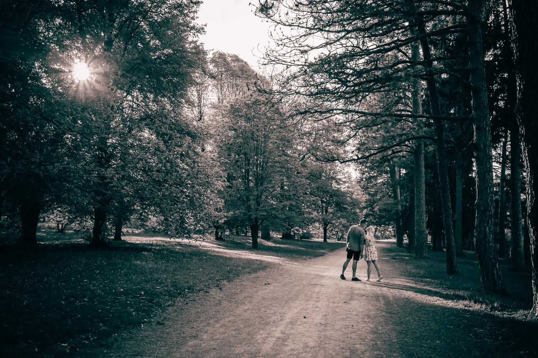 Engagement Session - Dominion Arboretum in Ottawa.