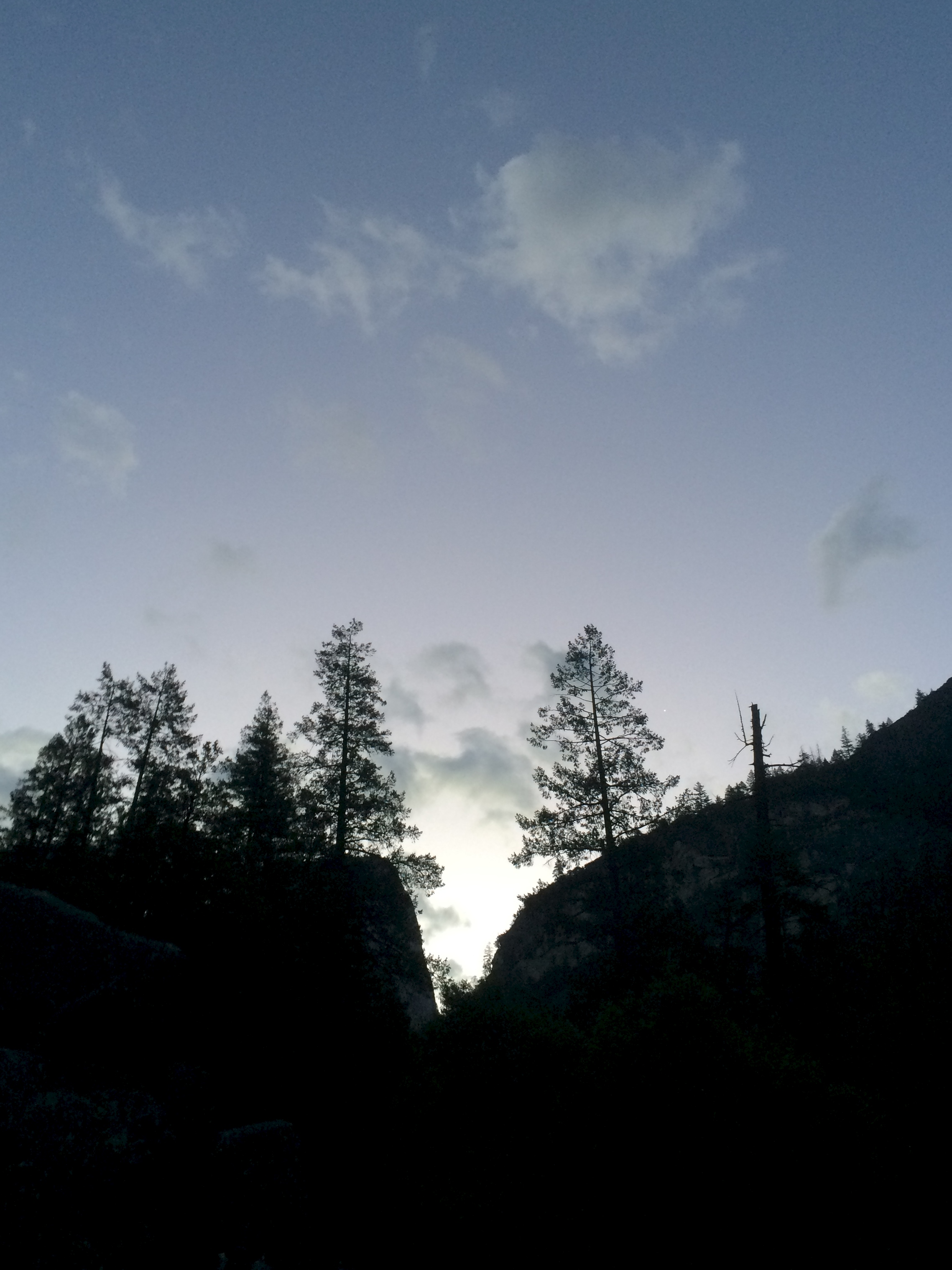 The grainily dawning dawn.