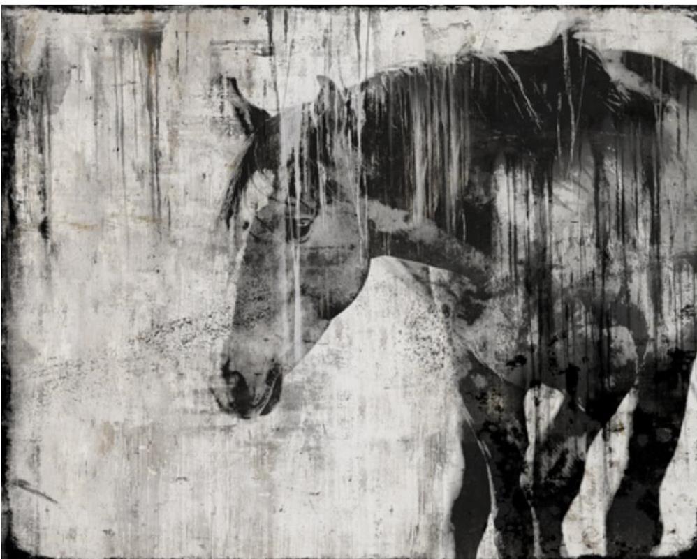 horseart.jpg